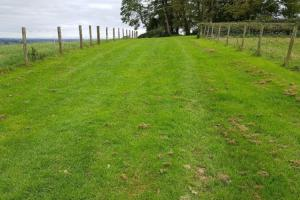 Grassed corridor at Tullaghoge Fort shows how grass has grown through the ground protection system